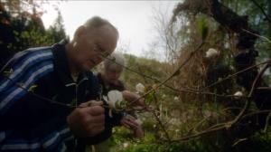 "Filmstill ""Garden Lovers"" © http://anttialanenfilmdiary.blogspot.co.at/2014/03/eedenista-pohjoiseen-garden-lovers.html"