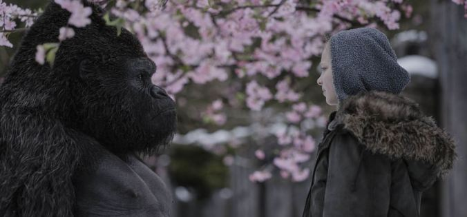 Planet der Affen 3 Survival_Amiah Miller (c) Twentieth Century Fox France